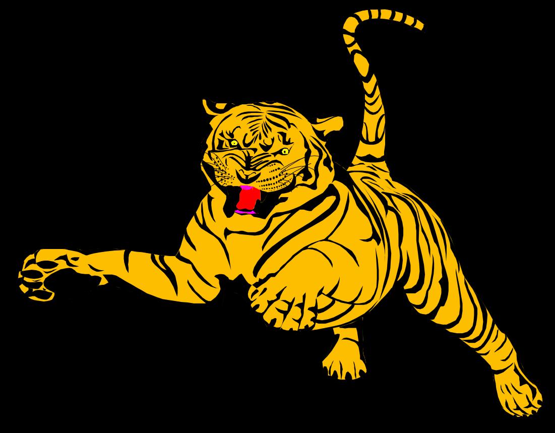 Classic Data Catalog pouncing tiger