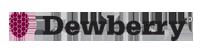 Dewberry logo and website link
