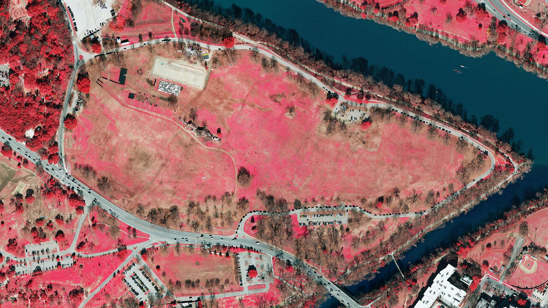 Color infra red of Zilker Park