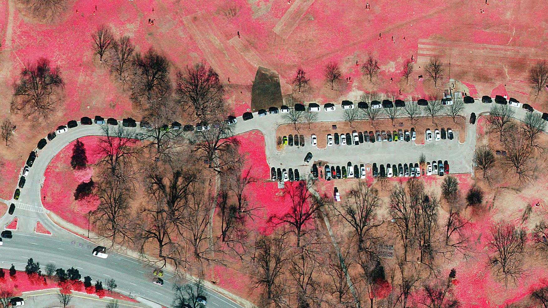 Color infra red of Zilker Park Parking